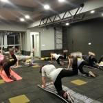 zenger fitness zeminleri2